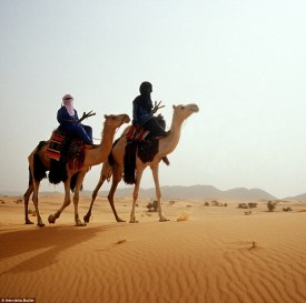The Tuareg have travelled across the Sahara for more than 1,000 years, the camels leading the way to fresh pastures